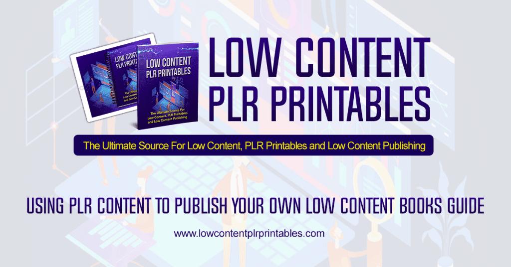 Using PLR Content to Publish Your Own Low Content Books, low content books, publishing plr, low content plr, plr printables