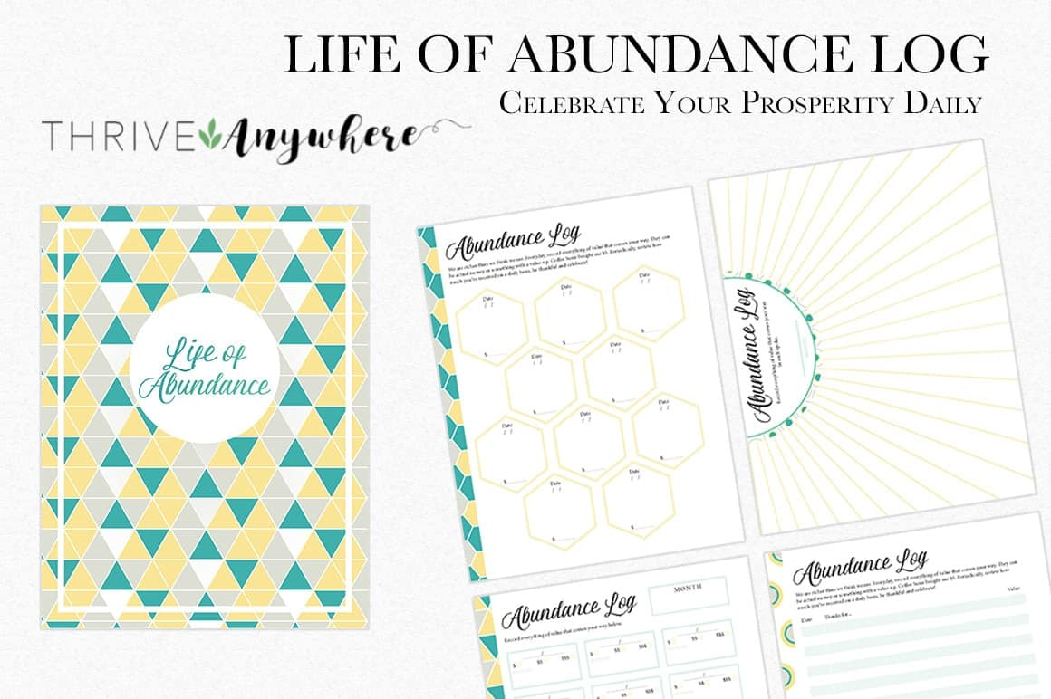 Life of Abundance Log Free PLR Journal Template