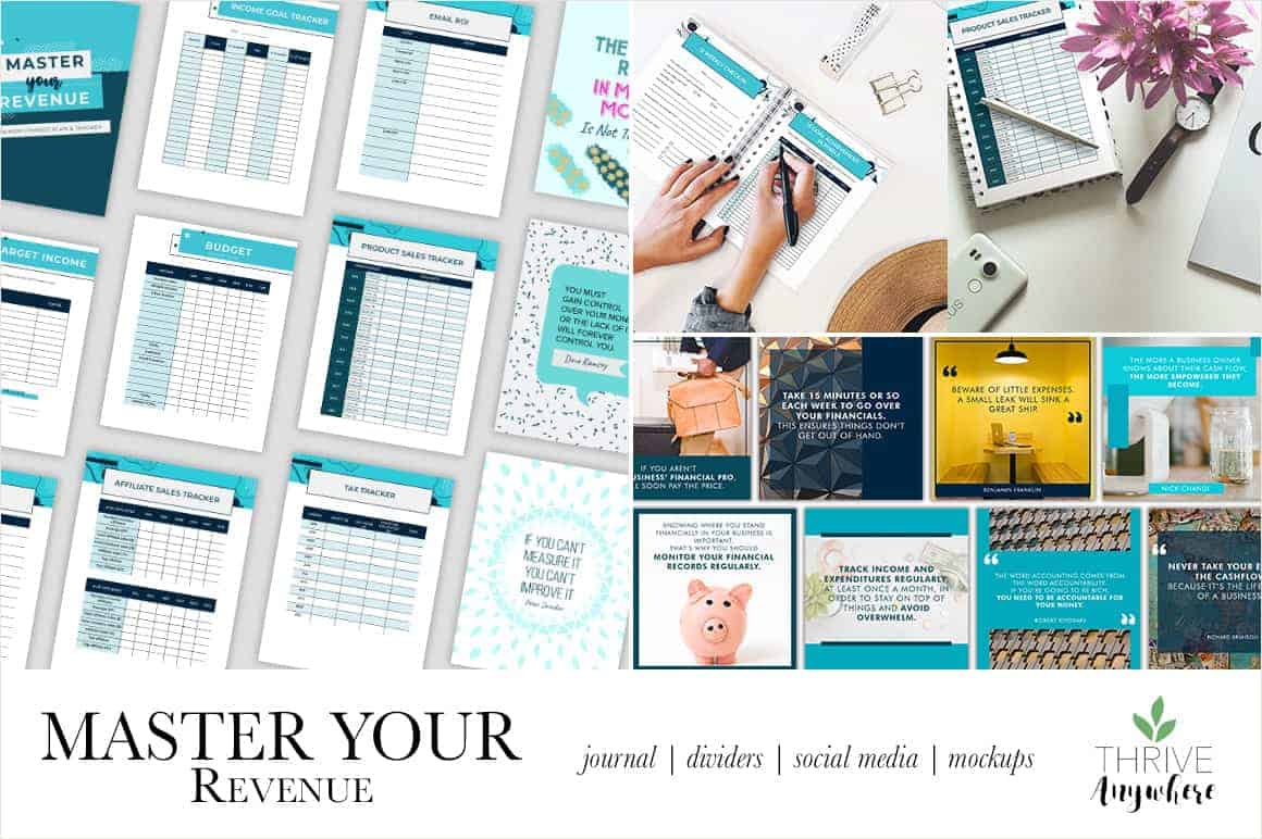 Master Your Revenue Business Expense and Financial PLR Tracker