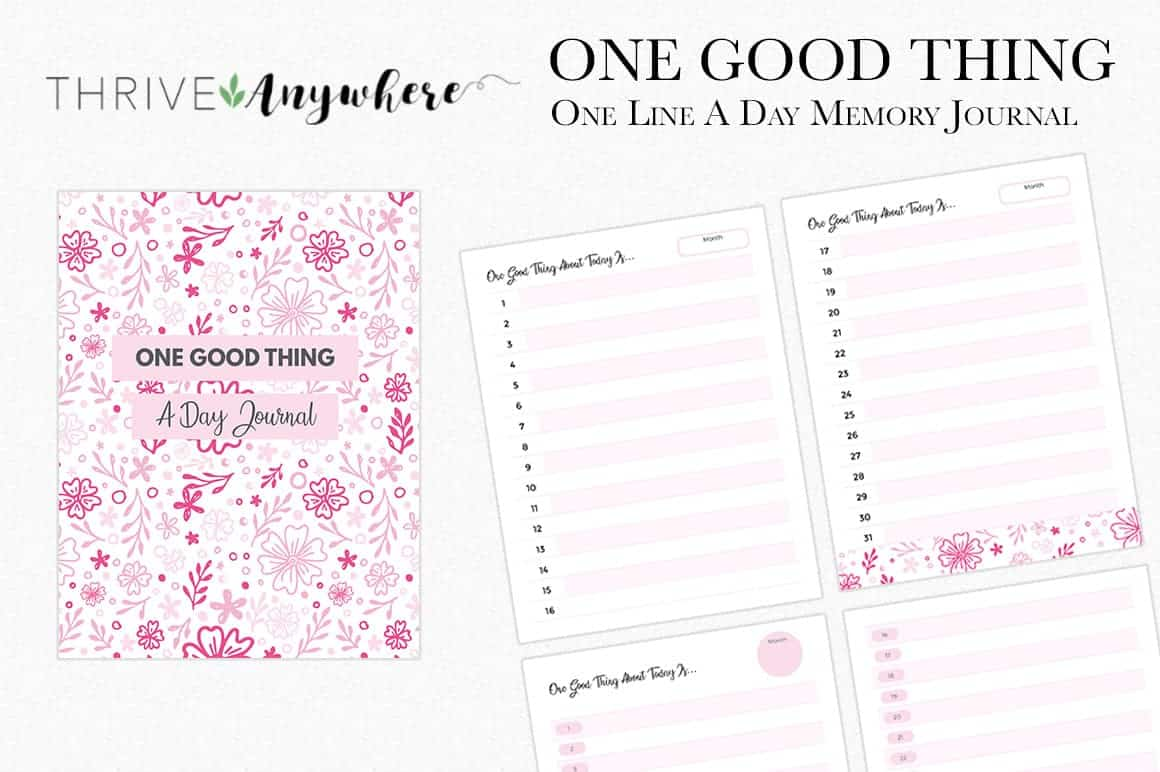 One Good Thing A Day Memory Book Free PLR Memory Book Journal Template