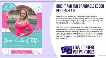 Bright and Fun Brandable Ebook PLR Template