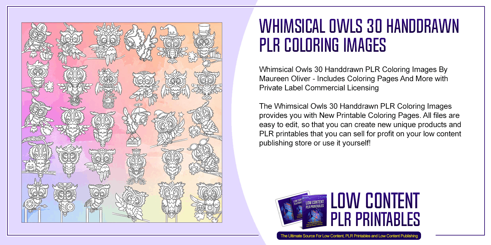 Whimsical Owls 30 Handdrawn PLR Coloring Images