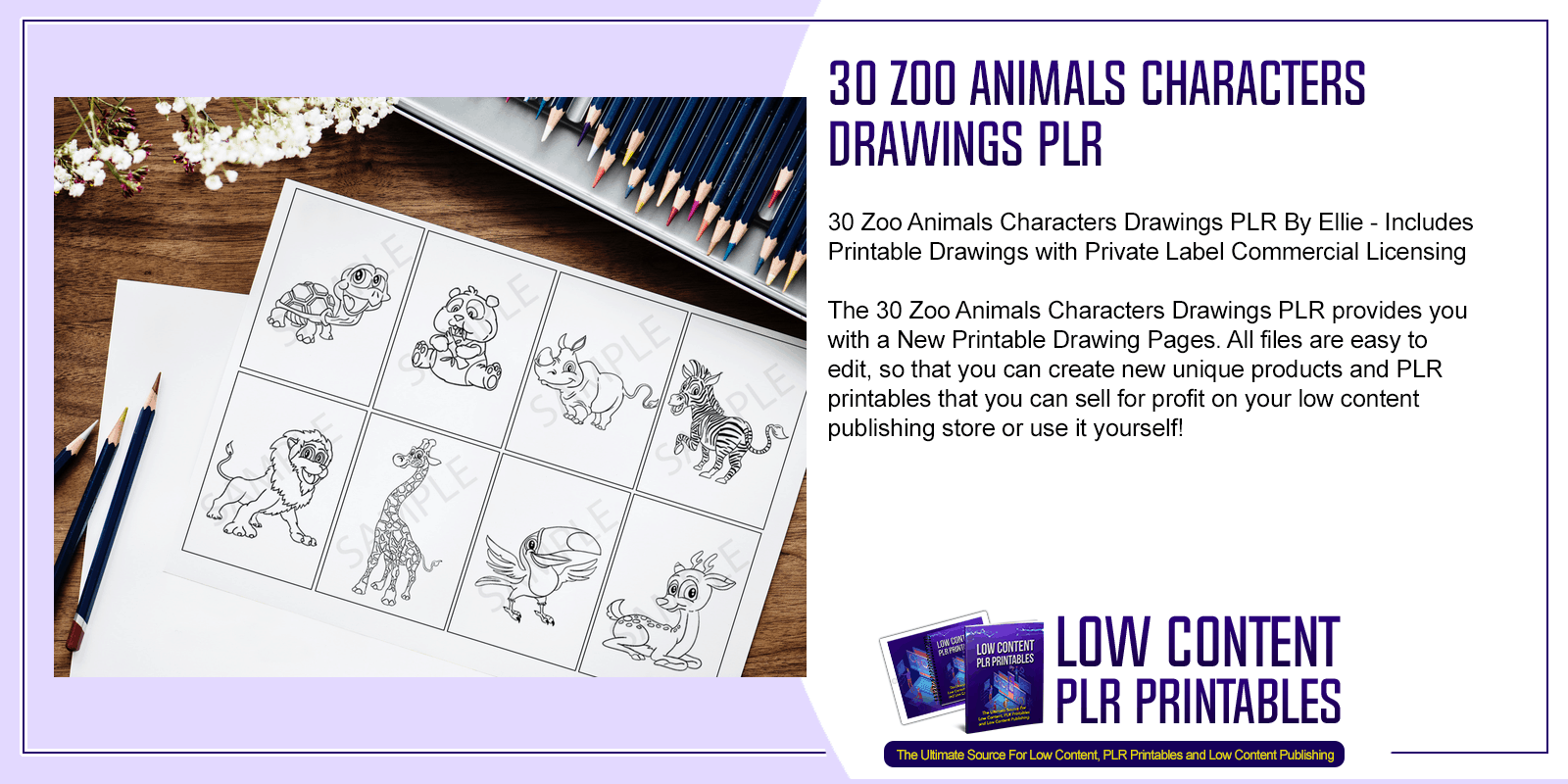 30 Zoo Animals Characters Drawings PLR