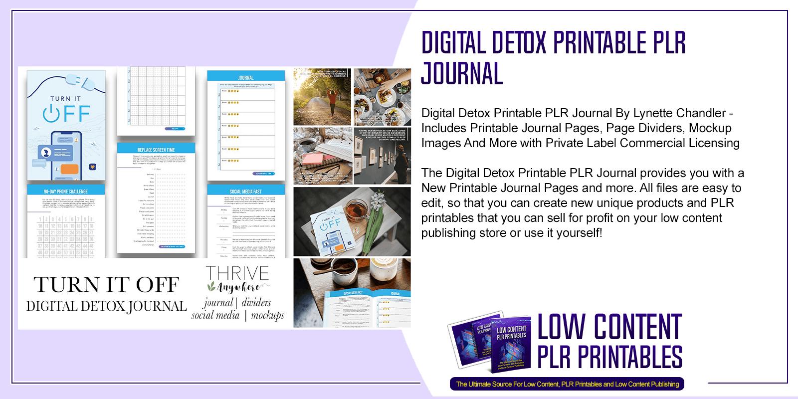 Digital Detox Printable PLR Journal