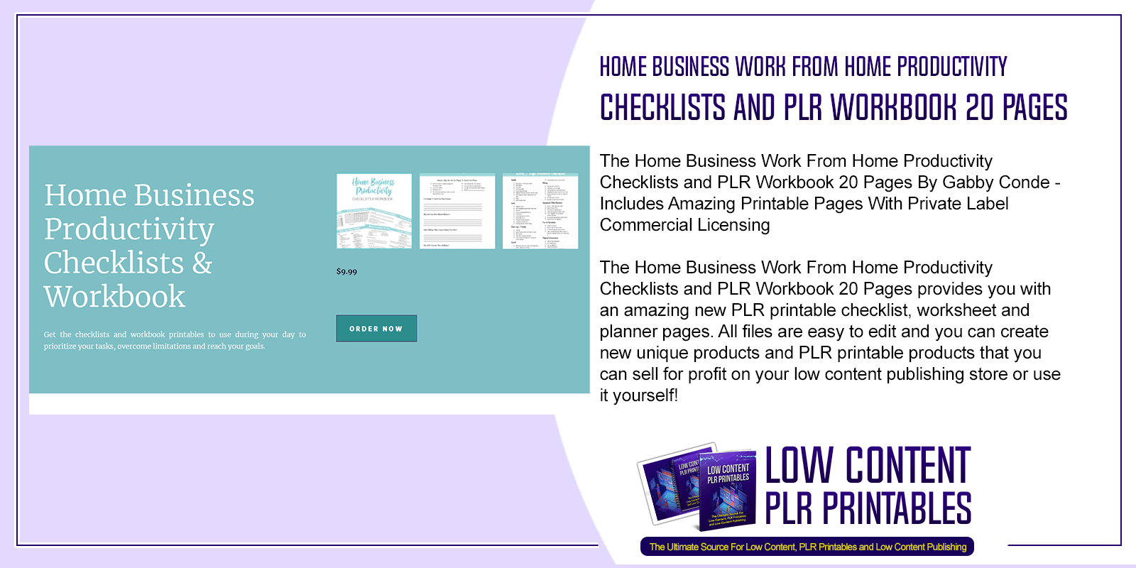 Home Business Work From Home Productivity Checklists and PLR Workbook 20 Pages