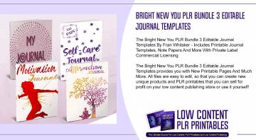Bright New You PLR Bundle 3 Editable Journal Templates